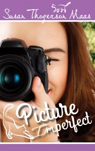 Picture Imperfect front cover